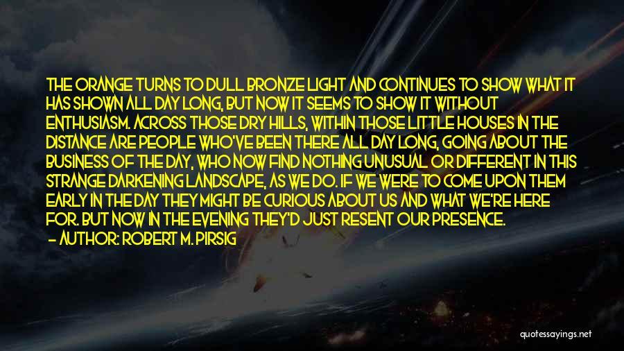 Bronze Quotes By Robert M. Pirsig