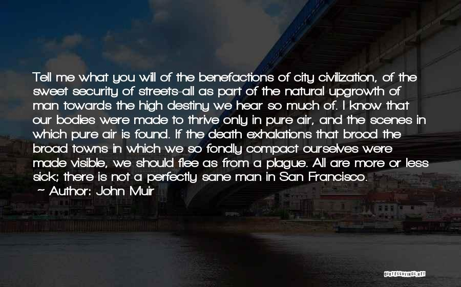 Brood Quotes By John Muir