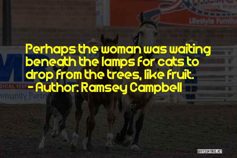 Brood Quotes By Ramsey Campbell