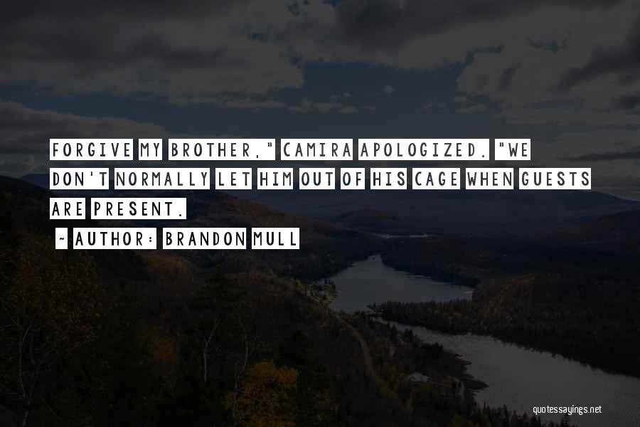 Brother Funny Quotes By Brandon Mull