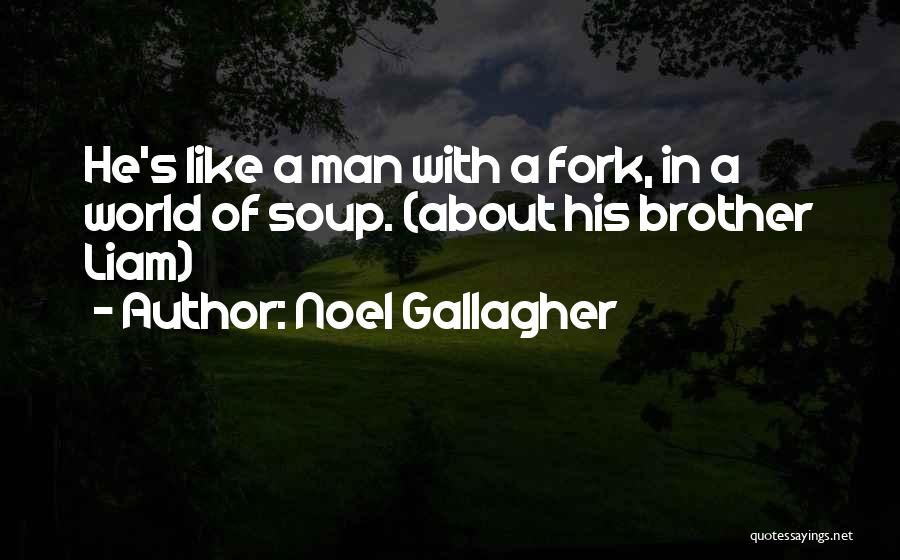 Brother Funny Quotes By Noel Gallagher