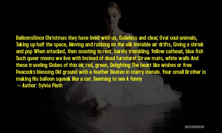 Brother Funny Quotes By Sylvia Plath