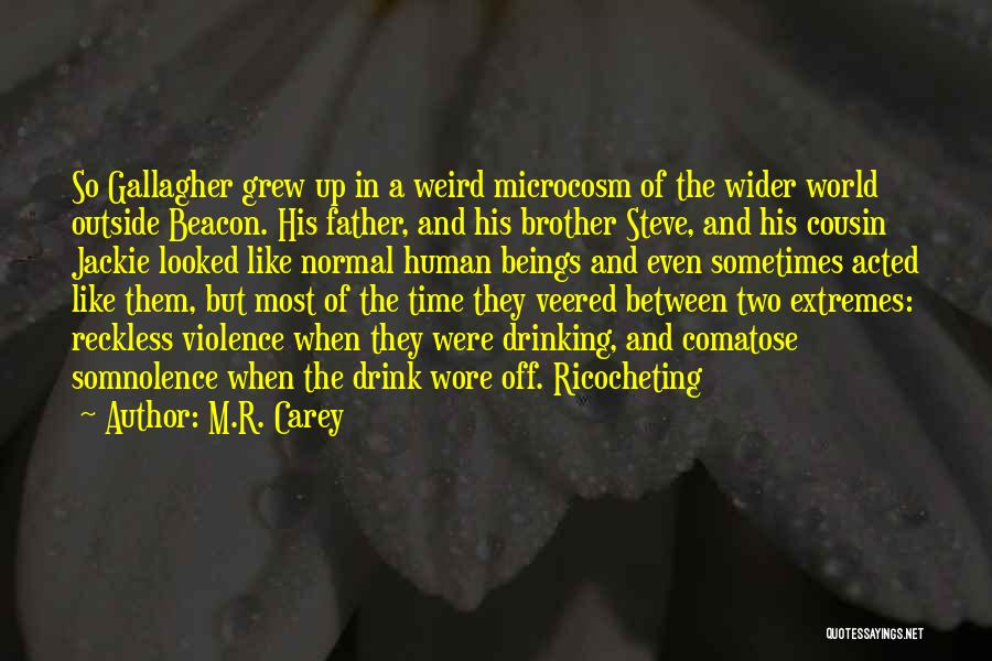 Brother Like Father Quotes By M.R. Carey