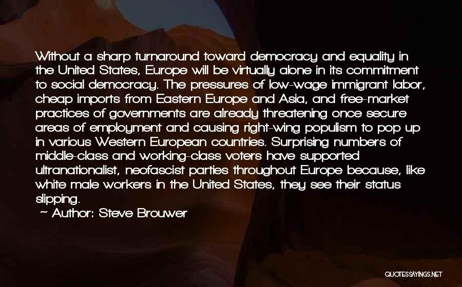 Brouwer Quotes By Steve Brouwer