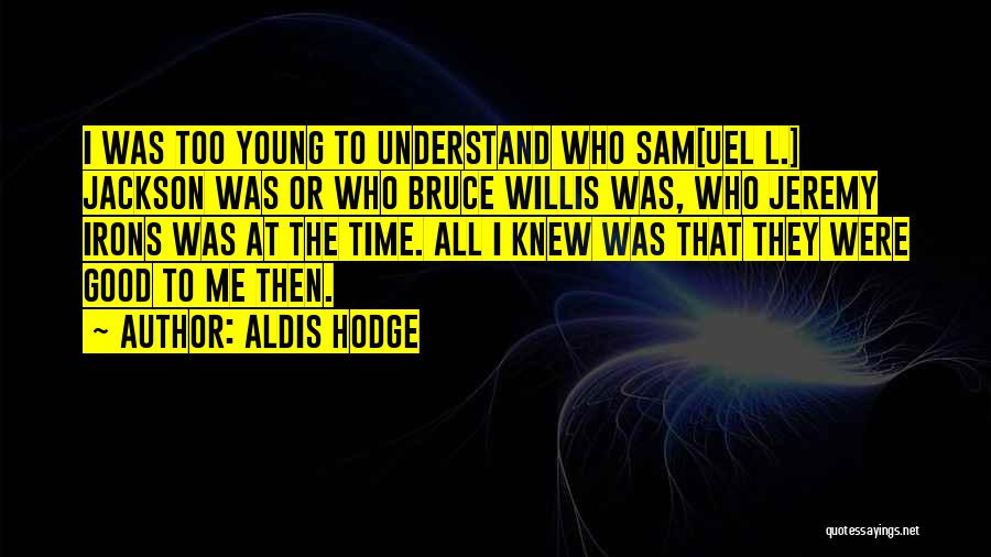 Bruce Irons Quotes By Aldis Hodge