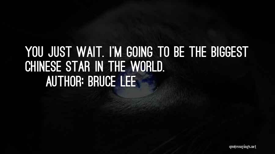 Bruce Lee Quotes 916805