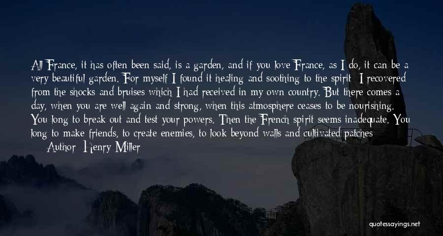 Bruises Healing Quotes By Henry Miller
