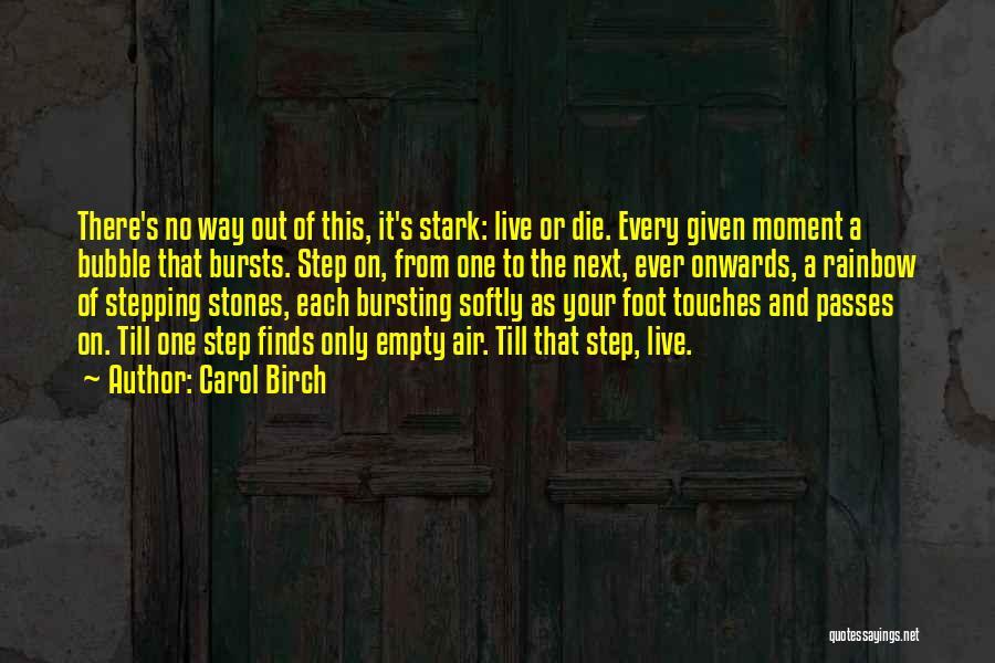 Bubble Bursting Quotes By Carol Birch