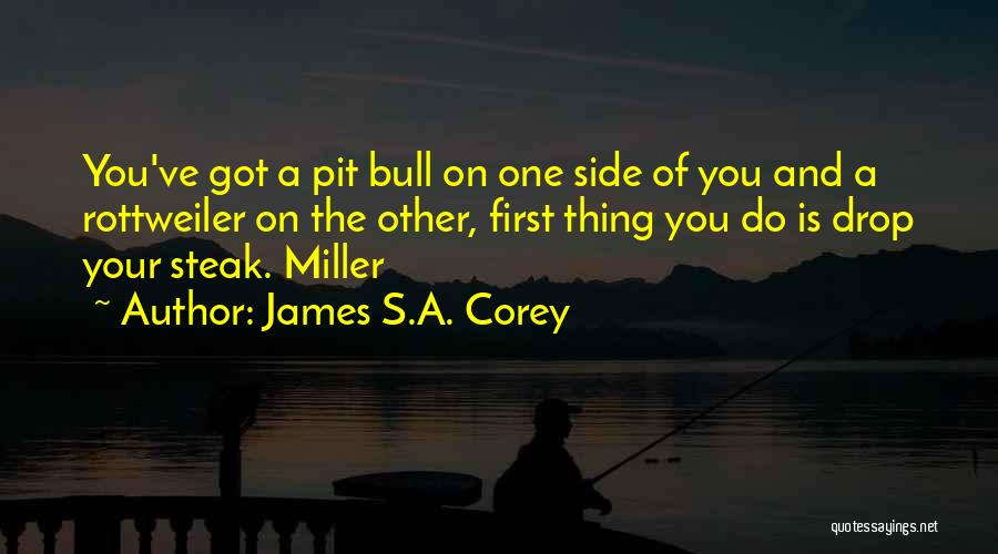 Bull Quotes By James S.A. Corey