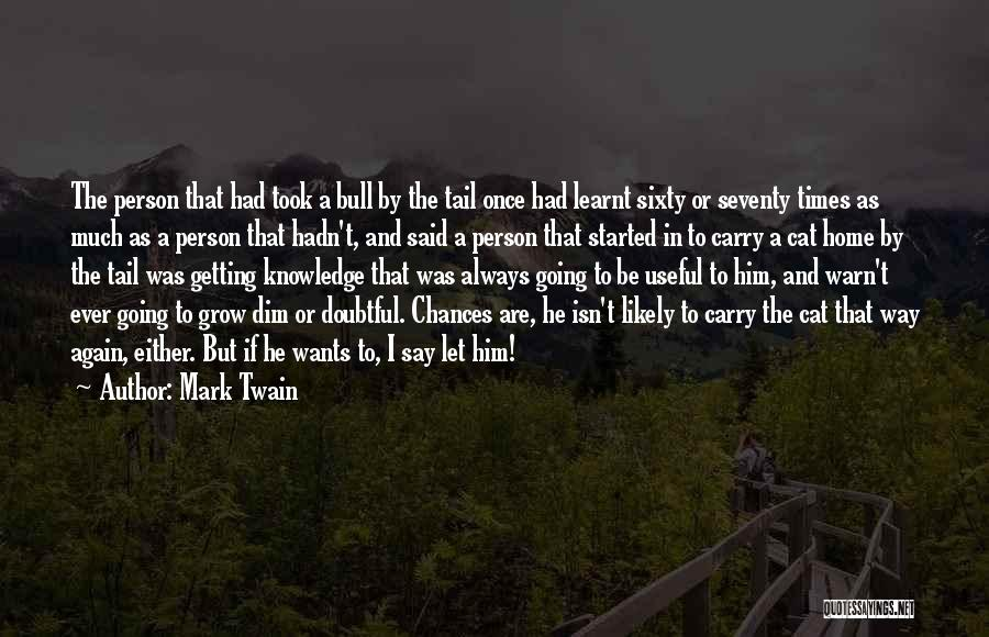 Bull Quotes By Mark Twain