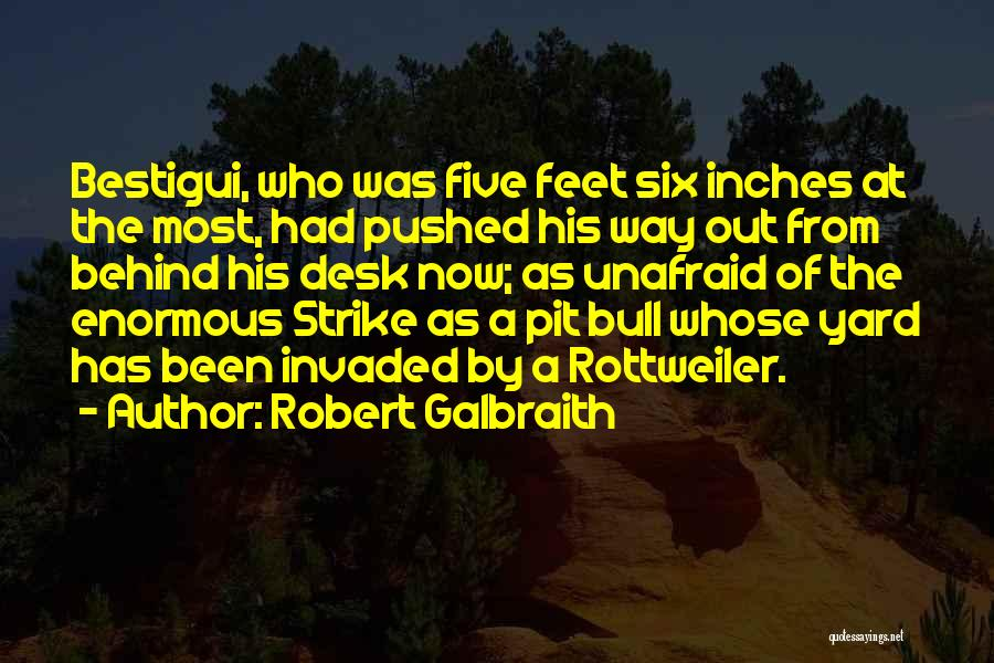 Bull Quotes By Robert Galbraith