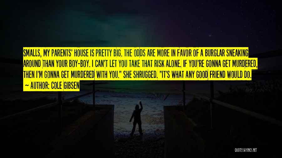 Burglar Quotes By Cole Gibsen