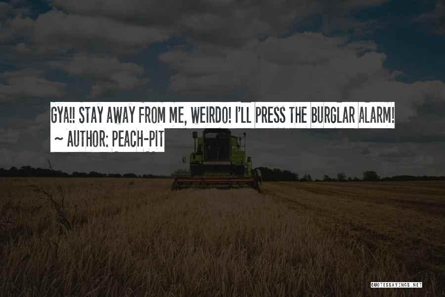 Burglar Quotes By Peach-Pit