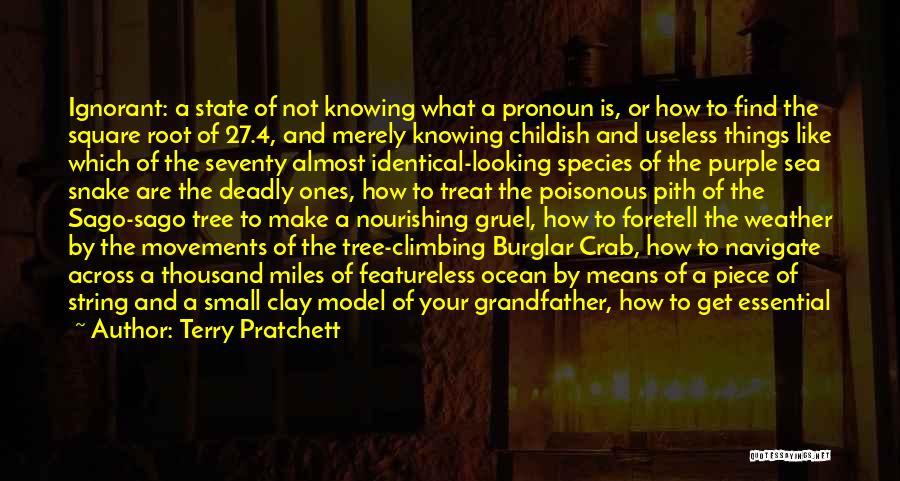 Burglar Quotes By Terry Pratchett