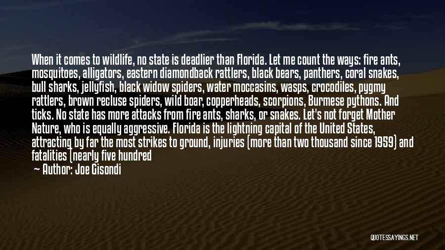Burmese Pythons Quotes By Joe Gisondi