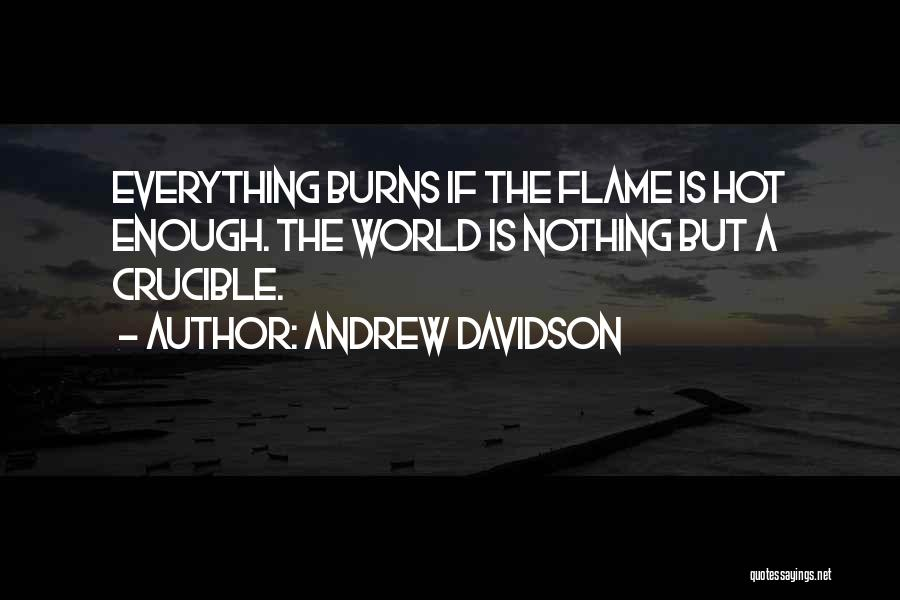 Burns Quotes By Andrew Davidson