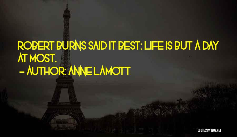 Burns Quotes By Anne Lamott