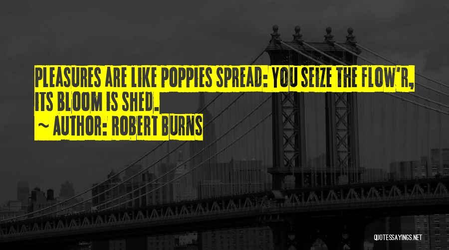 Burns Quotes By Robert Burns
