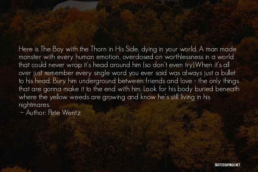 Bury Love Quotes By Pete Wentz