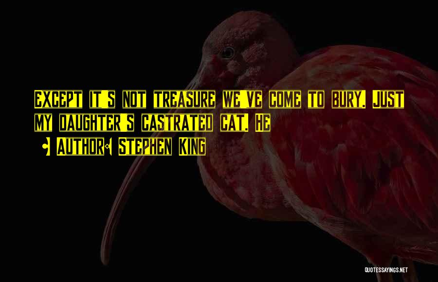 Bury Me A G Quotes By Stephen King