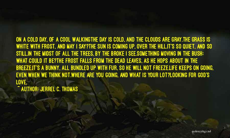 Bush Walking Quotes By Jerrel C. Thomas