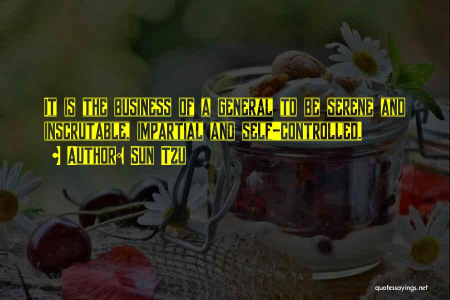 Business And It Quotes By Sun Tzu