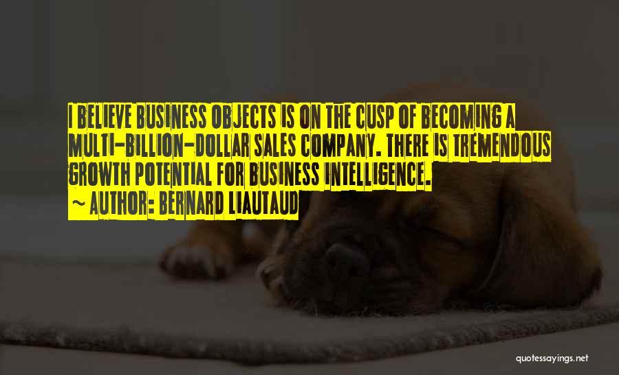 Business Growth Quotes By Bernard Liautaud