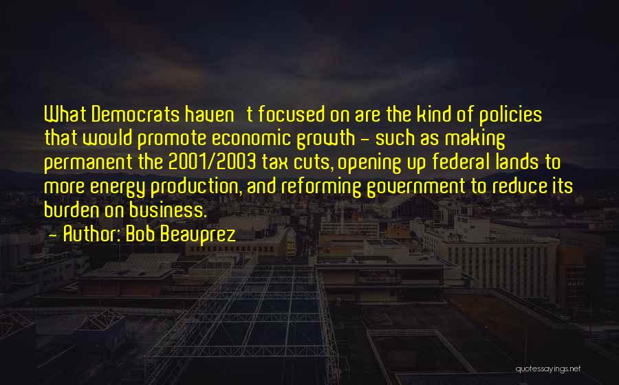 Business Growth Quotes By Bob Beauprez