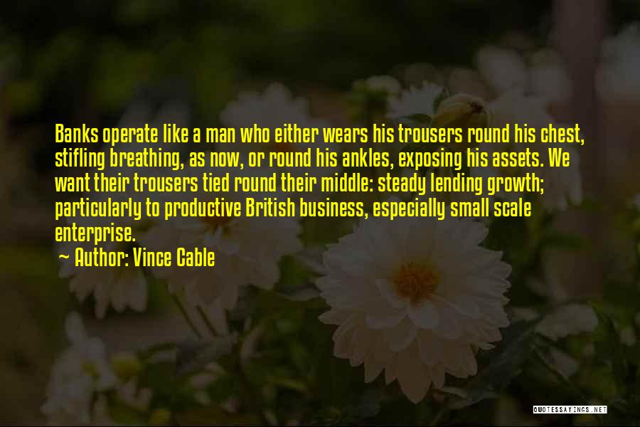 Business Growth Quotes By Vince Cable
