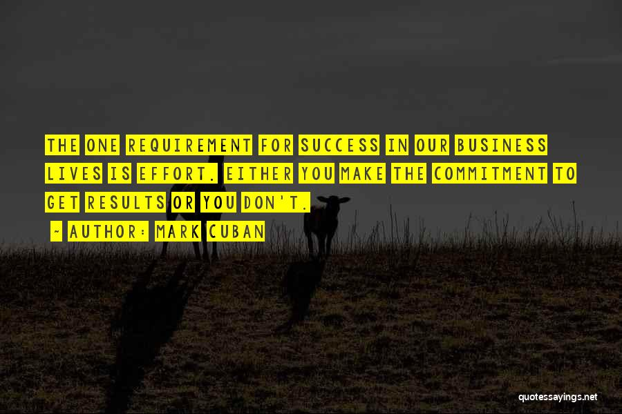 Business Results Quotes By Mark Cuban