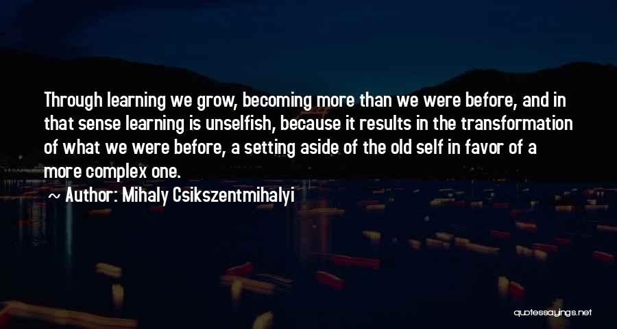 Business Results Quotes By Mihaly Csikszentmihalyi