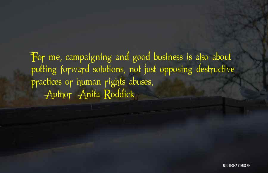Business Solutions Quotes By Anita Roddick