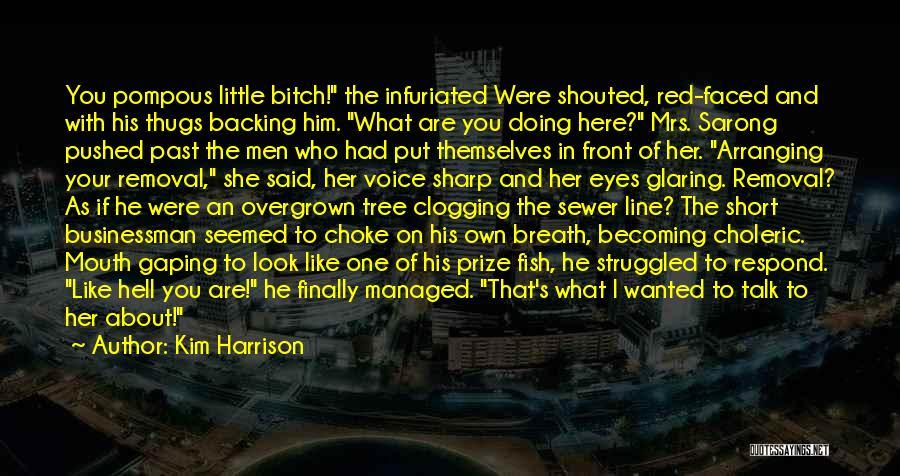 Businessman Quotes By Kim Harrison