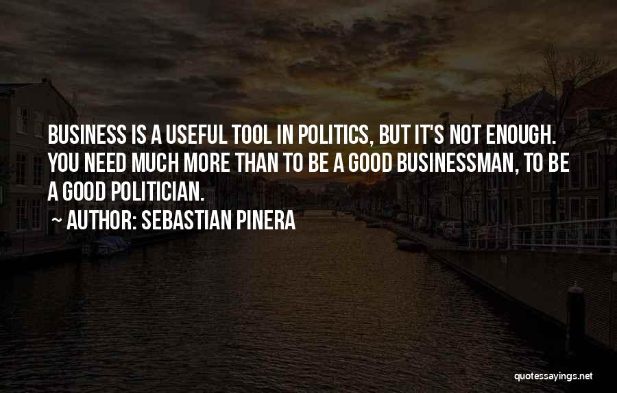 Businessman Quotes By Sebastian Pinera