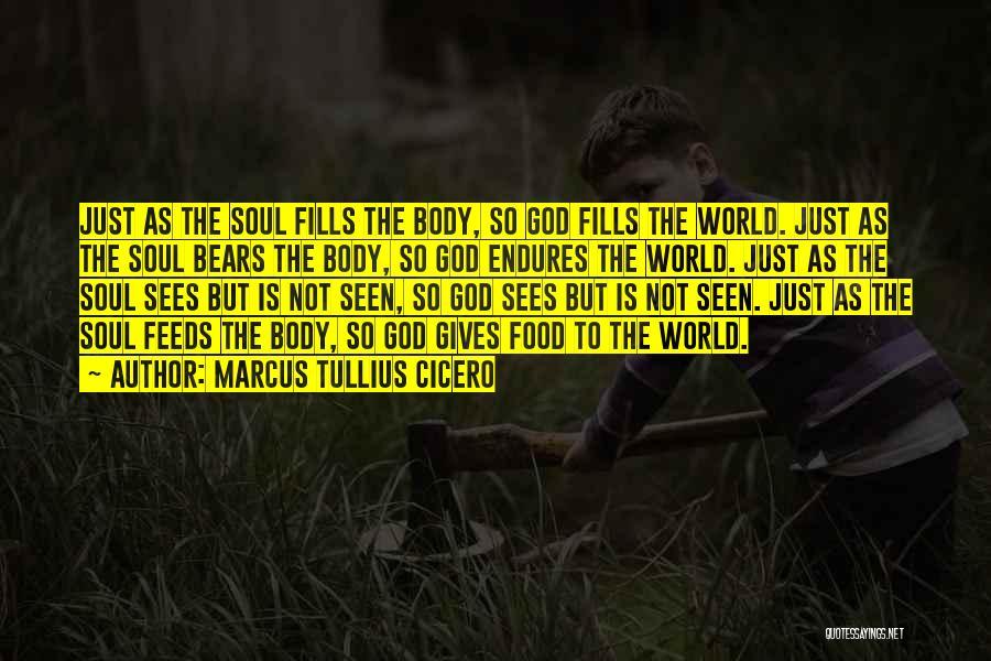 But God Quotes By Marcus Tullius Cicero
