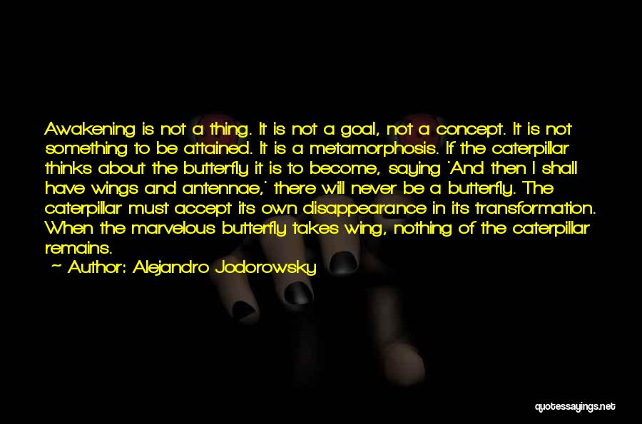 Butterfly And Caterpillar Quotes By Alejandro Jodorowsky