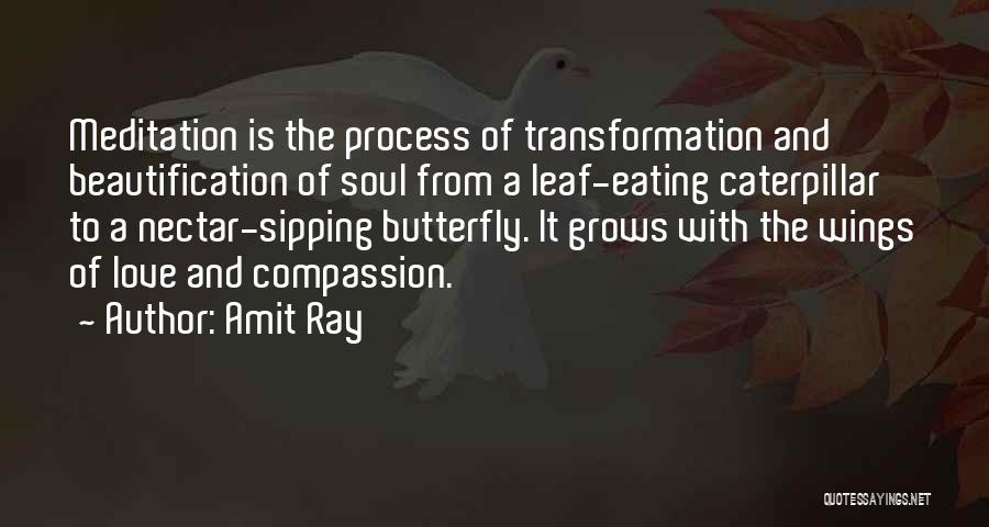 Butterfly And Caterpillar Quotes By Amit Ray
