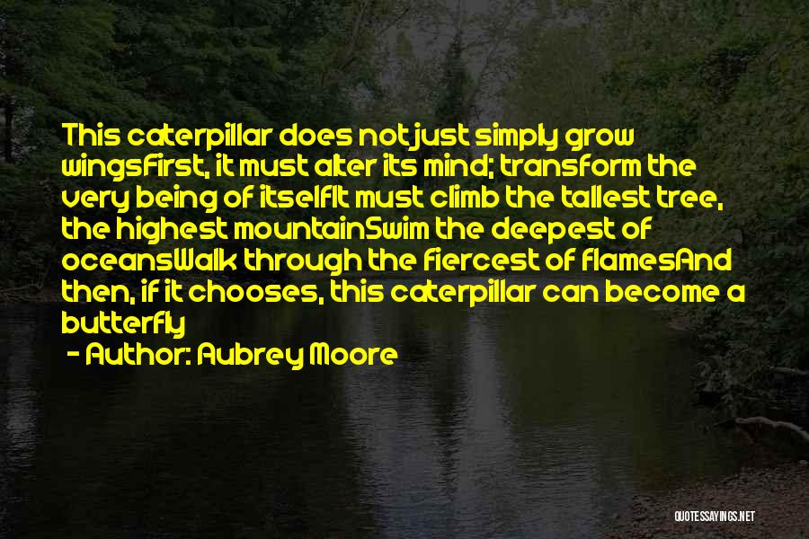 Butterfly And Caterpillar Quotes By Aubrey Moore