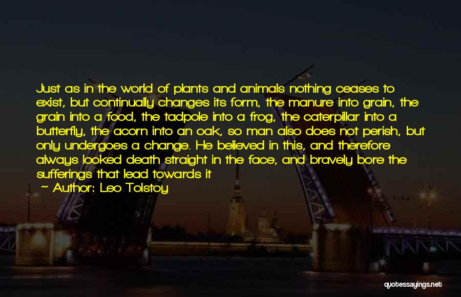 Butterfly And Caterpillar Quotes By Leo Tolstoy