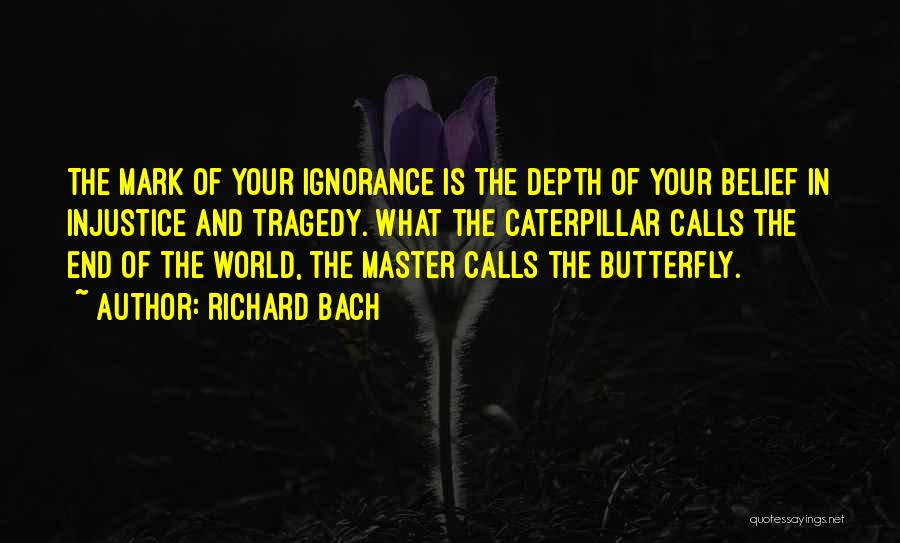 Butterfly And Caterpillar Quotes By Richard Bach