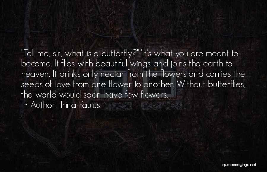 Butterfly And Flower Love Quotes By Trina Paulus