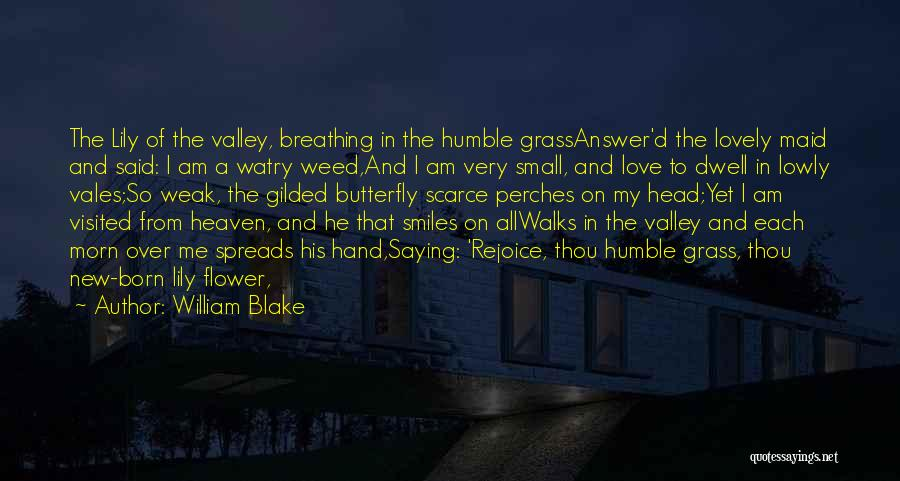 Butterfly Heaven Quotes By William Blake