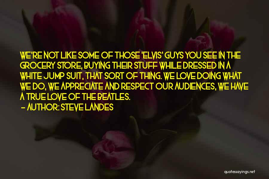Buying Stuff Quotes By Steve Landes