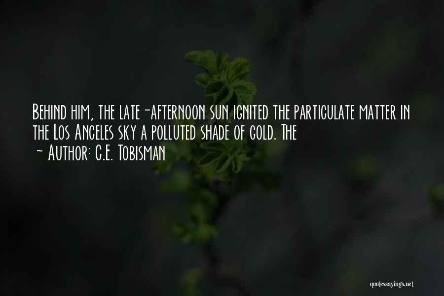 C.E. Tobisman Quotes 2186512