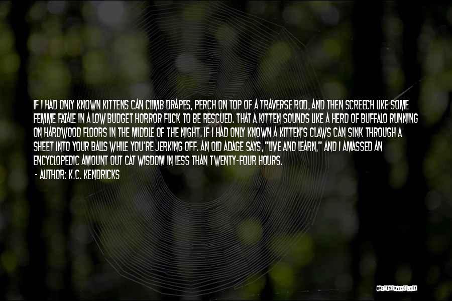 C.k. Quotes By K.C. Kendricks