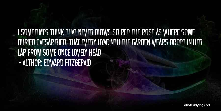 Caesar Quotes By Edward FitzGerald