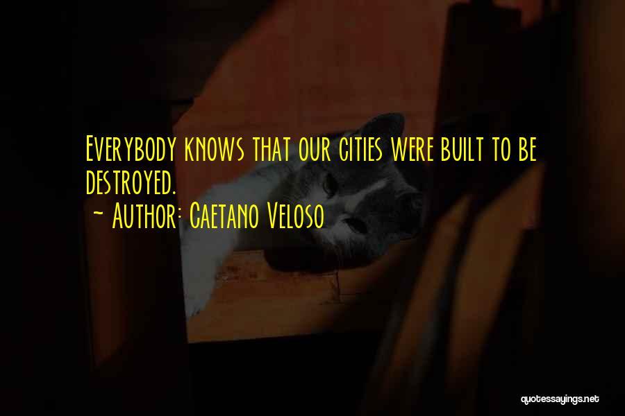 Caetano Veloso Quotes 928698