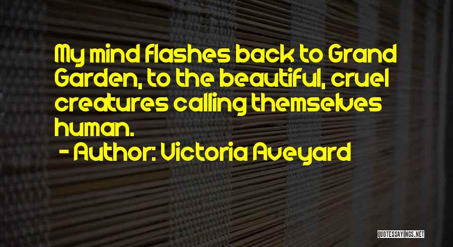 Calling Yourself Beautiful Quotes By Victoria Aveyard