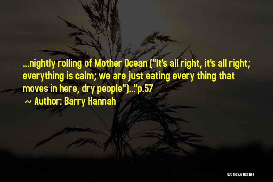 Calm Ocean Quotes By Barry Hannah