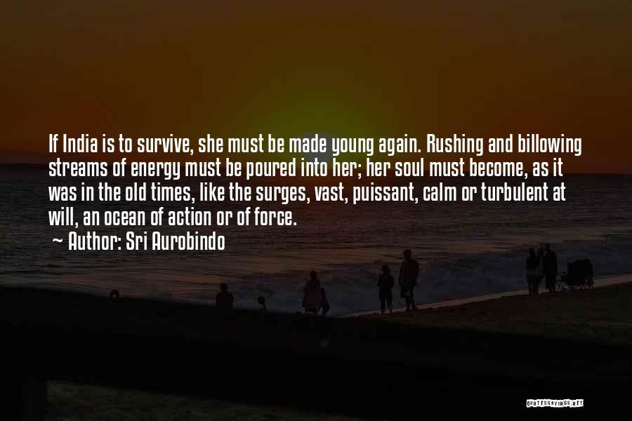 Calm Ocean Quotes By Sri Aurobindo